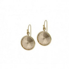 Jimmy Crystal Swarovski Earrings EJ2058A