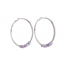 Jimmy Crystal Earrings EJ2232